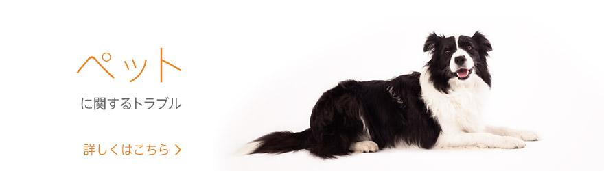 ペットに関するトラブルトピックス